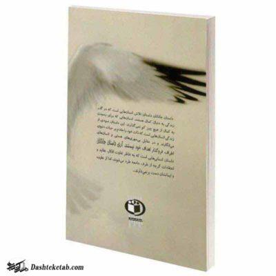 جملات زیبا از کتاب جاناتان مرغ دریایی